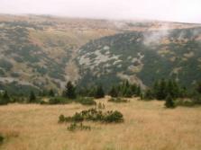 Krkonoše Mountains - habitats of black grouse and deer mating (c) Vlastimil Kostkan