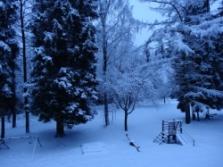 krásný zimní výhled z okna